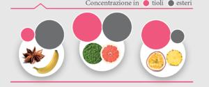 Interazioni percettive: concentrazione in tioli / esteri