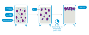 How the process of must flotation and flocculation takes place inside the tank.